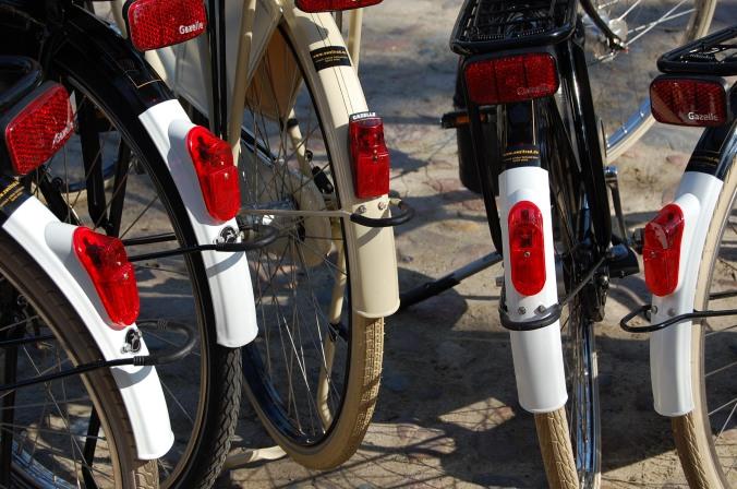 Hollandrad Varianten von Gazelle